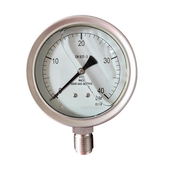 Bourdon Tube Pressure Gauge 316L ss Wetted Part 100mm 0~40bar